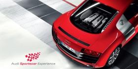 Audi Audi D-Side Group tmp Print